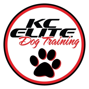 kc elite dog training